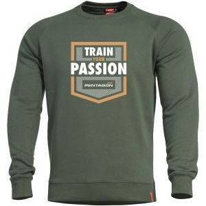 Bluza Pentagon Hawk Sweater TP Camo Green