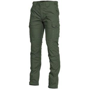 Spodnie Pentagon Ranger 2.0 Camo Green